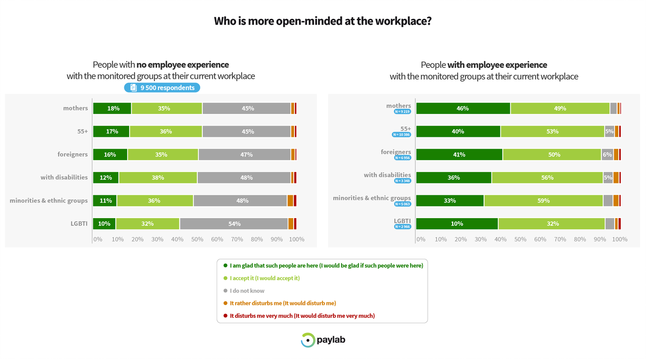Paylab Diversity study 2019 diversity perception according to employee experience with diversity group